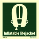 INFLATABLE LIFEJACKET  (15x15cm) Phot.Vin. IMO sign 100270