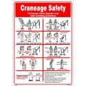 Póster CRANEAGE SAFETY Póster  (45x32cm) White Vin. IMO symbol 221530WV