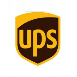 Service standard UPS 4-6 working days delivery (1 Kg)